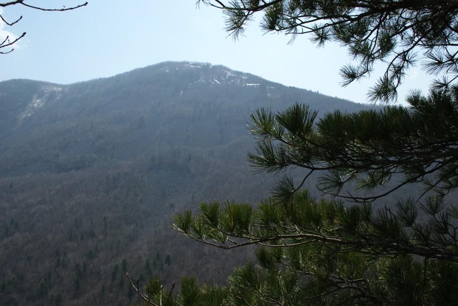 Вид со скалы | Ущелье Дарданеллы, река Тигровая