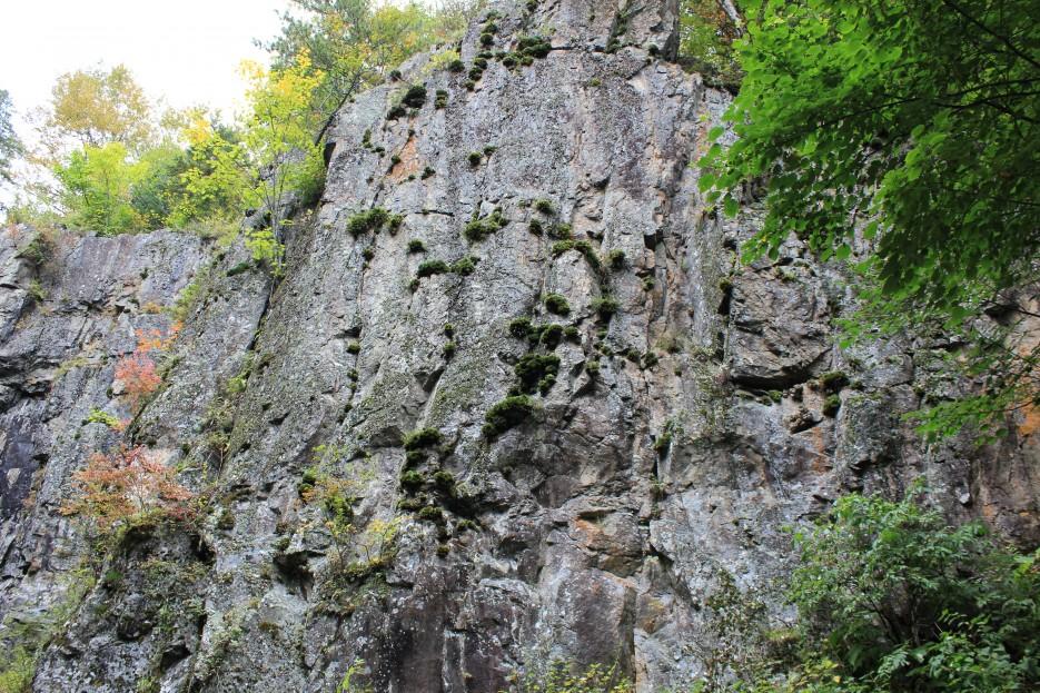 растительность на камнях | Водопад Беневской (Еломовский). Лазовский район