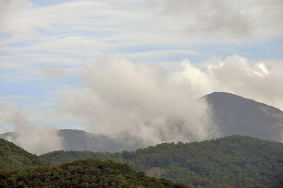 Гуляющая дымка. | Туманный Пидан (Лето). По левой тропе.