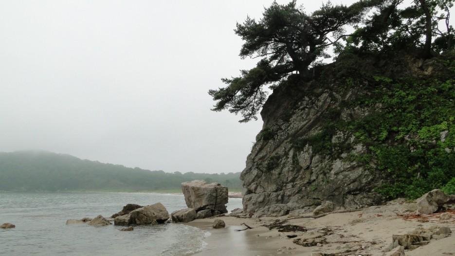 б.Средняя | Дальневосточный морской заповедник