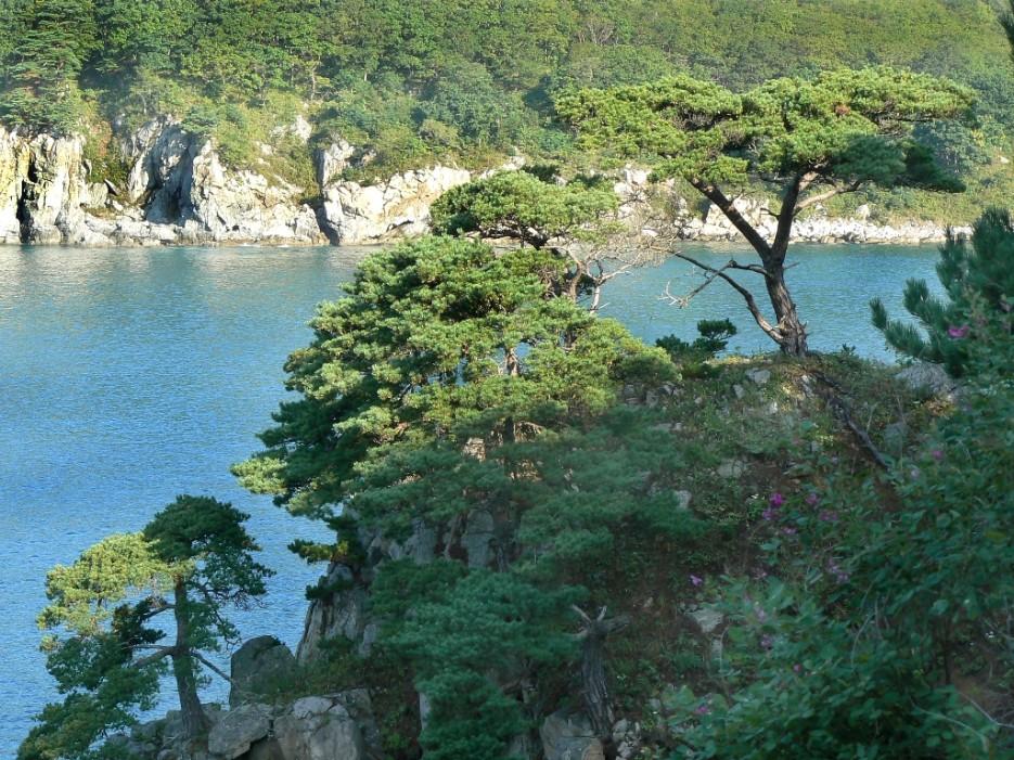 Полуостров Гамова | А остальное - острова (Хасанский район) Альбом4