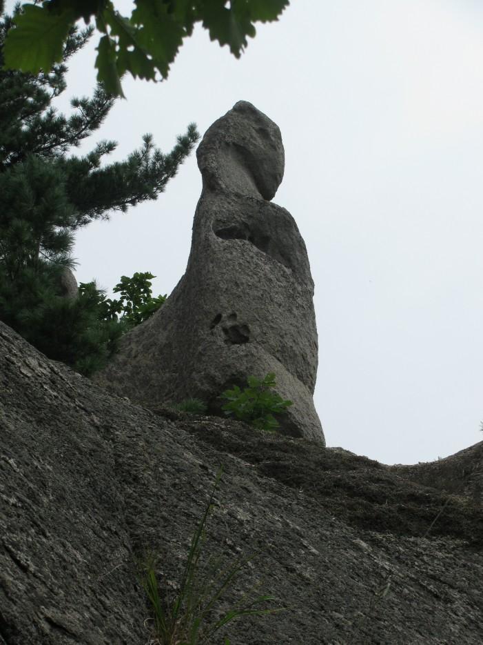 Окрестности Чистоводного. Скальные образования. Дракон маленький. | Окрестности Чистоводного