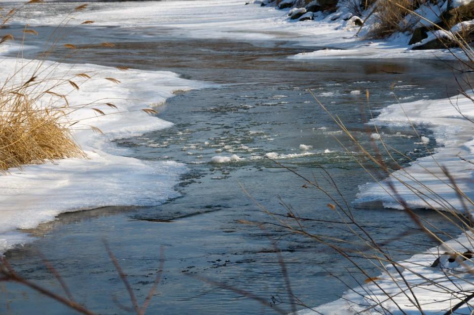 Русло реки. Даже в февральские морозы не застывает.   Река Пойма.