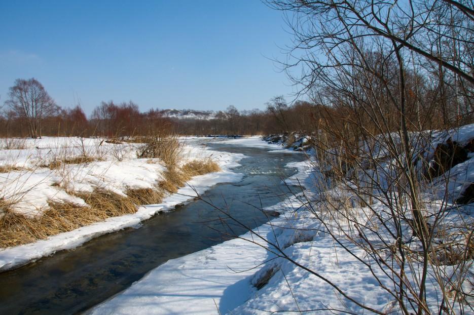 Русло реки. | Река Пойма.