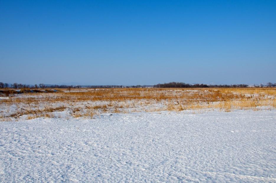 Берег бухты Бойсмана. Снежный наст | Полуостров Клерка.