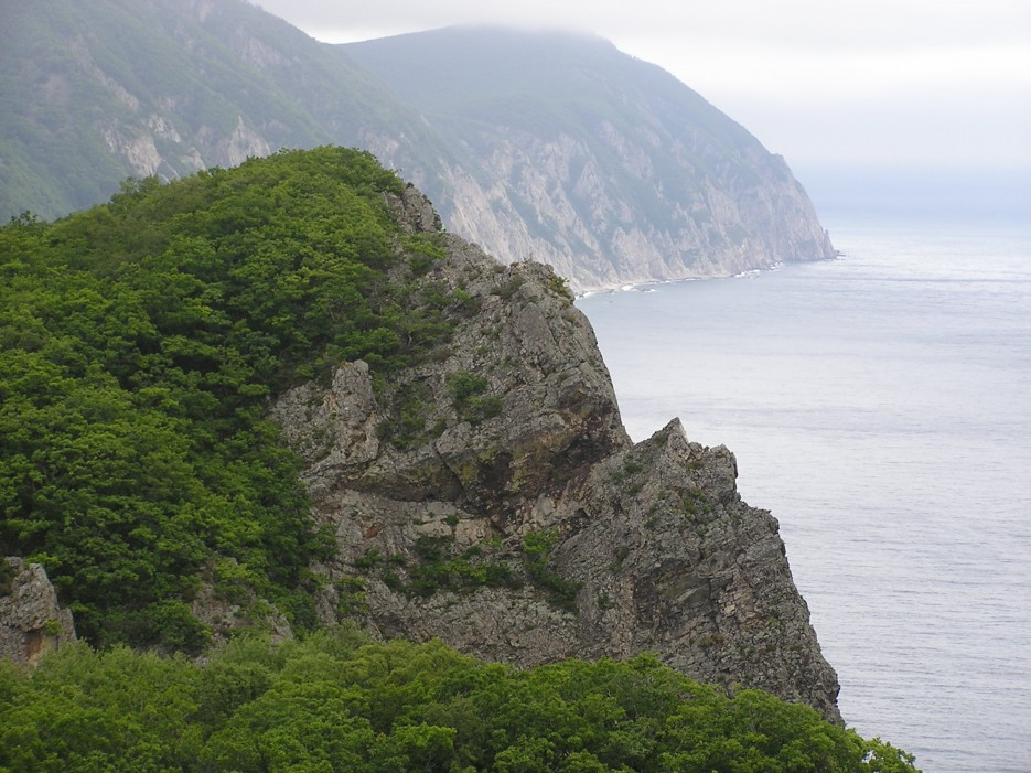 Скальное побережье | п. Каменка, залив Опричник, мыс Сигнальный.