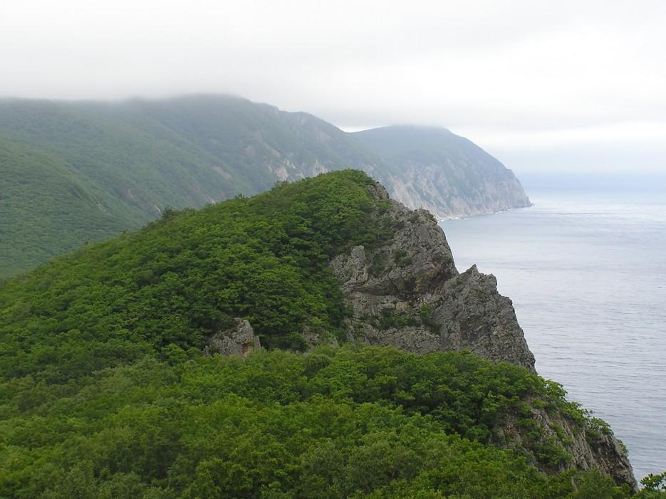 Скала | п. Каменка, залив Опричник, мыс Сигнальный.