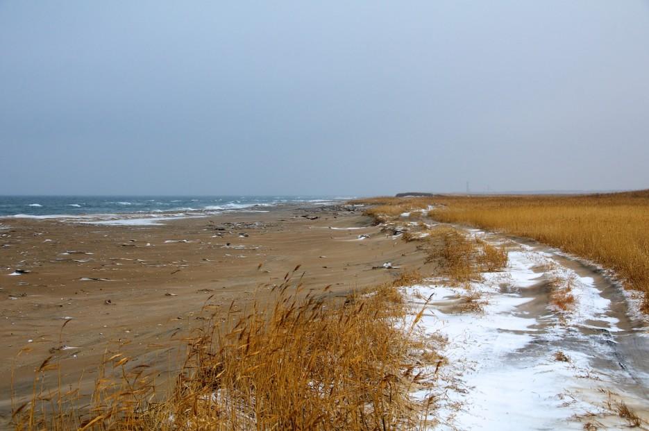 Зимний пляж. | Хасанские болота зимой