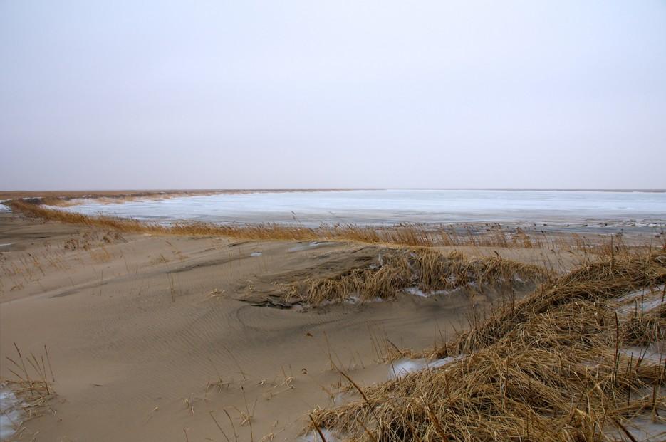 Знаменитая вторая протока зимой | Хасанские болота зимой