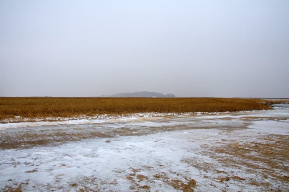 Утёс Голубинный | Хасанские болота зимой