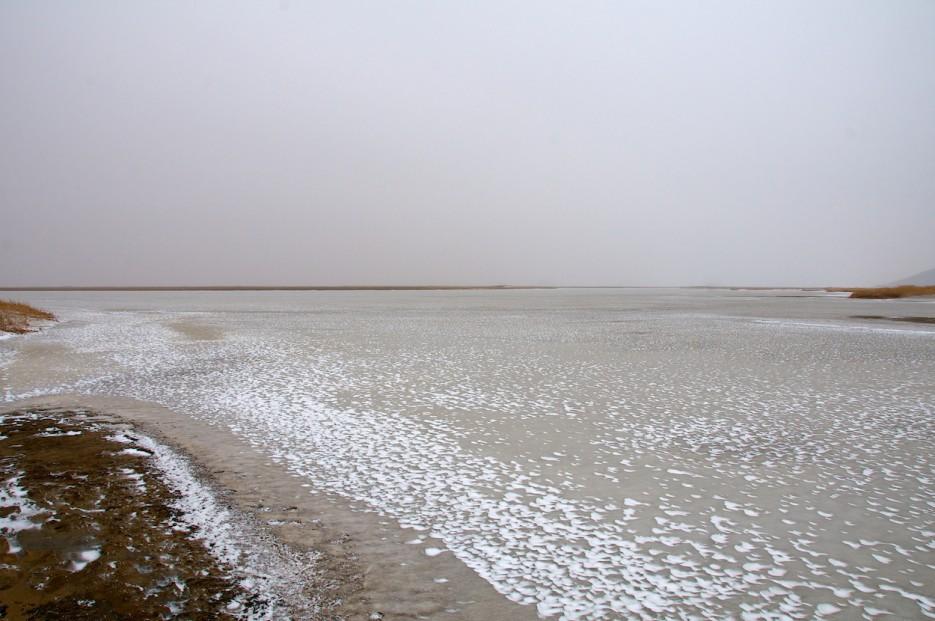 Замёрзшие протоки | Хасанские болота зимой