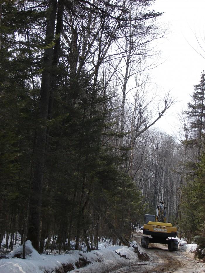 18.Экскаватор на дороге впереди нас. | 1.04.2012 года. Водопад Тигровый. Шкотовское плато.