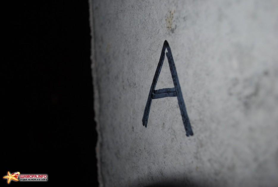 Фото 3213 | Энкаунтер: Теория бреда