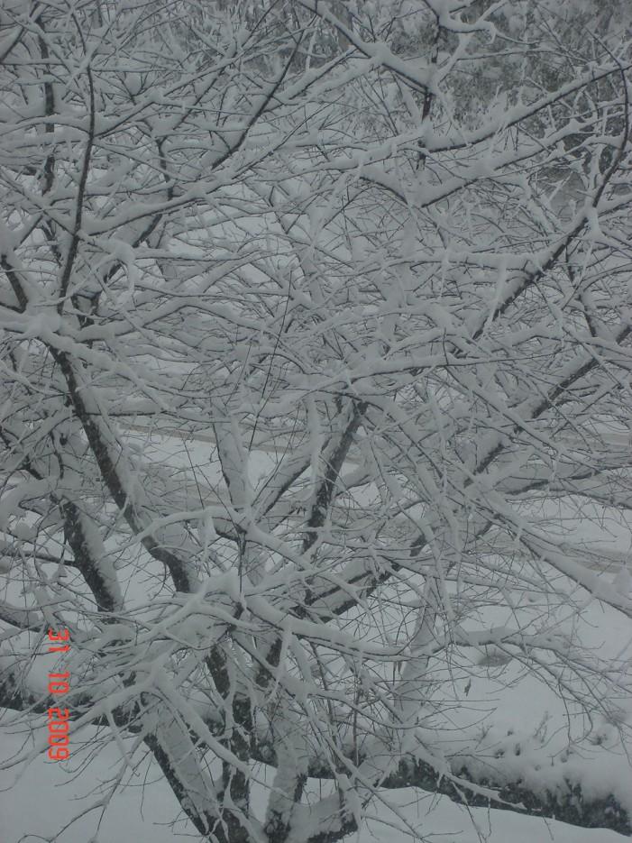 Зима | Южная Лифляндия (Новый мир), Шкотовский район
