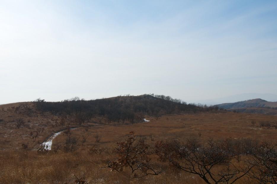 Дорга и болота | Хасан зимний. Часть1. Озеро Птичье (Тальми), озеро Родниковое, бухта Калевала.