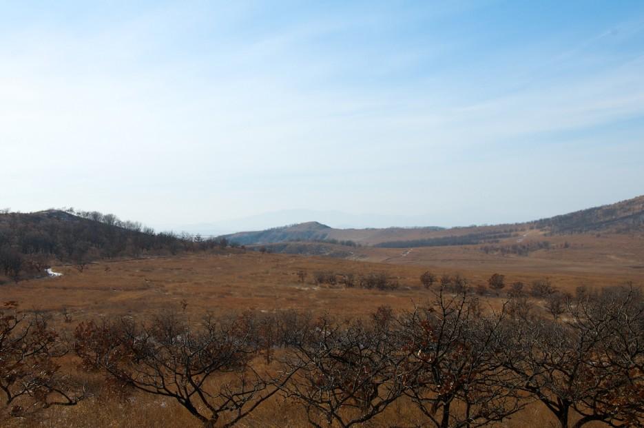Долина между озёрами.   Хасан зимний. Часть1. Озеро Птичье (Тальми), озеро Родниковое, бухта Калевала.