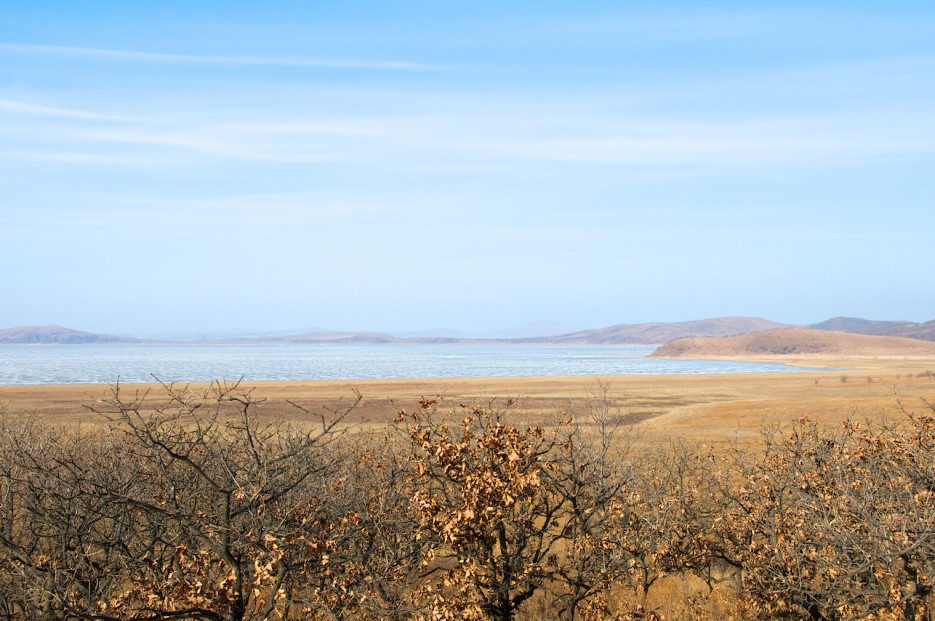 Болотистый берег и озеро Птичье. | Хасан зимний. Часть1. Озеро Птичье (Тальми), озеро Родниковое, бухта Калевала.