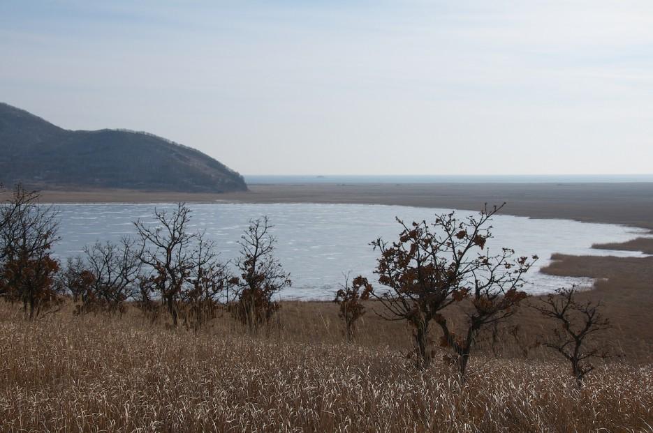 Озеро Родниковое   Хасан зимний. Часть1. Озеро Птичье (Тальми), озеро Родниковое, бухта Калевала.