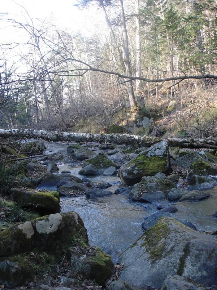 Фото 35042   водопад Горбатый, Шкотовский район