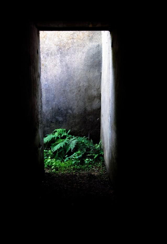 Свет в конце туннеля.   Полуостров (мыс) Шульца. Полуостров Гамова. Южное Приморье.