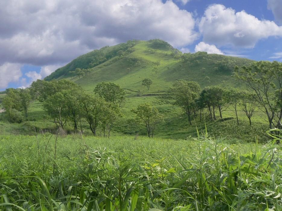 Вблизи Славянки. | Леса, реки, горы Хасанского района
