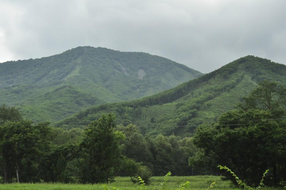 Фото 35725 | Ливадийская гора (Пидан)