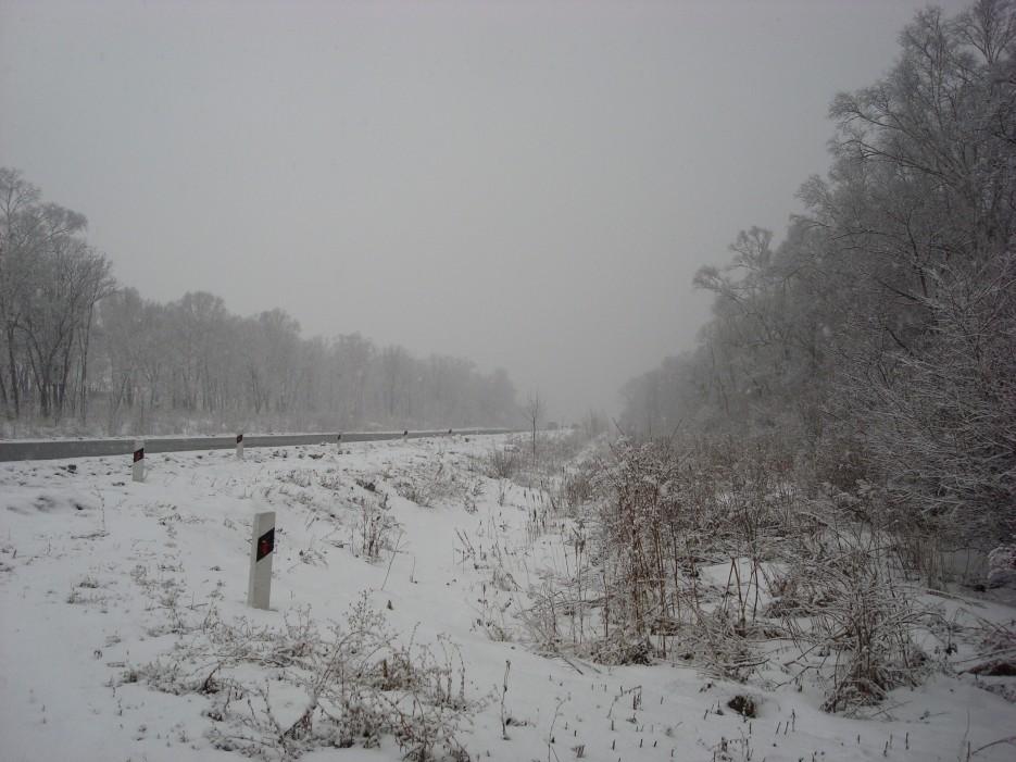 трасса Владивосток-Находка. идёт снег | Зима в Приморье