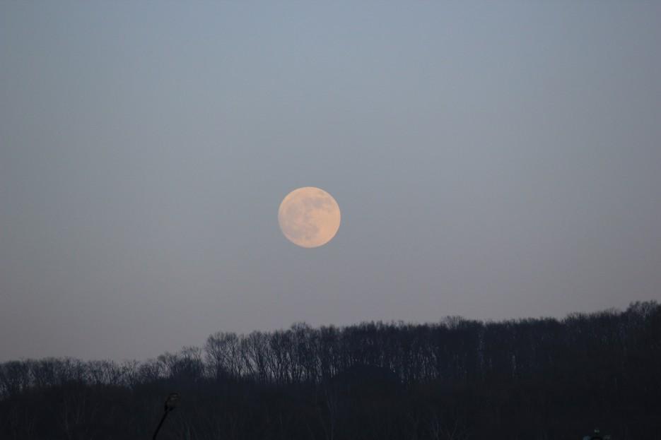 Луна | Зима в Приморье