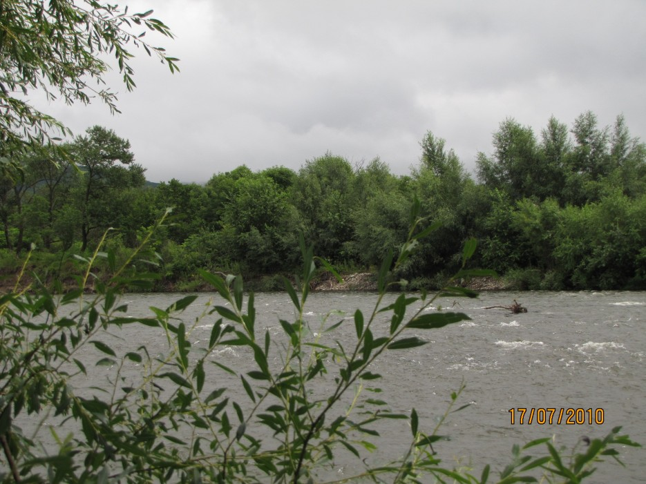 Река Тигровая. Партизанский район. | Река Тигровая. Партизанский район.
