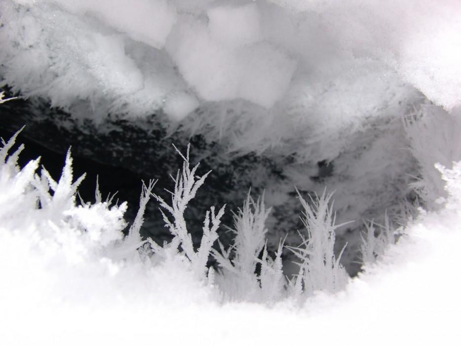 Нора. Ущелье щеки Дарданеллы. Партизанский район. Зима. | Ущелье щеки Дарданеллы. Партизанский район. Зима.