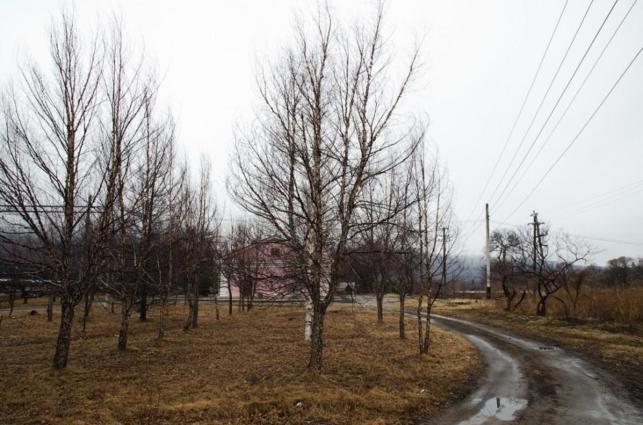 Дорога от станции Барановский. | Барановский вулкан. Надежденско-Уссурийский район.
