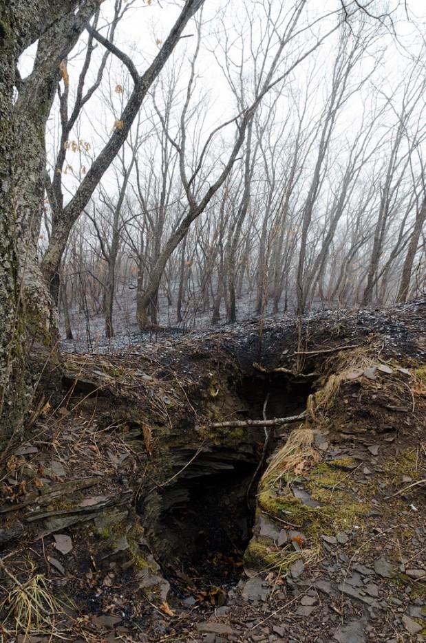 В земле повсеместно встречаются опасные провалы. | Барановский вулкан. Надежденско-Уссурийский район.