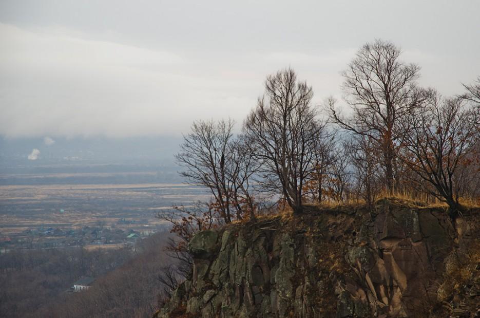 А на краю растут бесстрашные деревья. | Барановский вулкан. Надежденско-Уссурийский район.