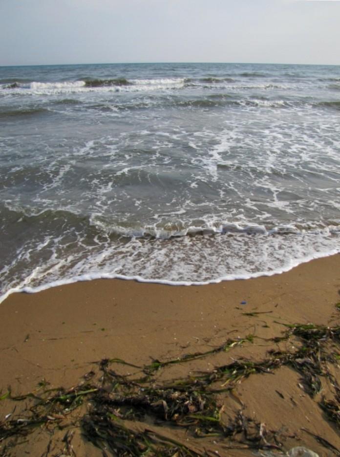 любимый пляж   Шамора