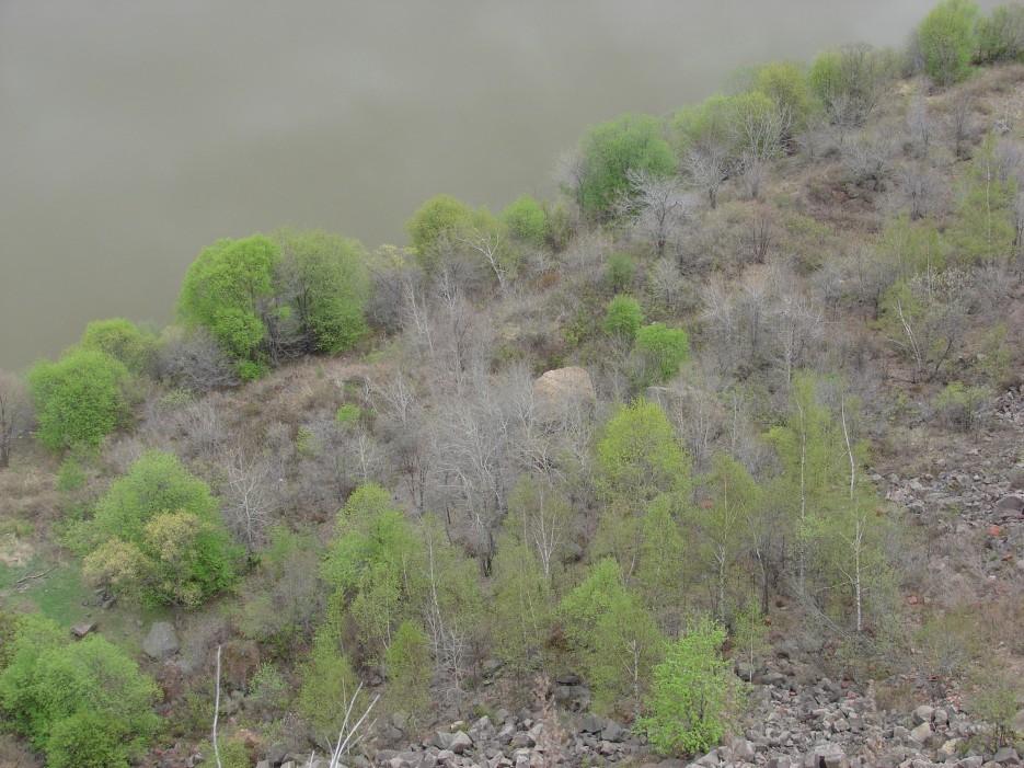 25.Внизу река Суйфун. Длина 245 км.   7.05.2012 года. Поездка к древнему вулкану Барановский. п.Тереховка.