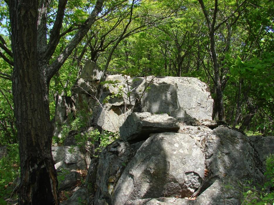 12.Камни на хребтике. | 25.05.2012 года. г.Суходол, д.Лукьяновка.