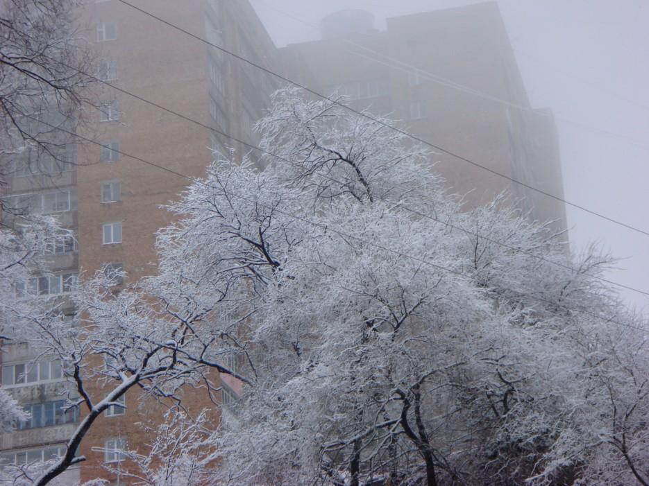 город зимой | Владивосток (подборка)