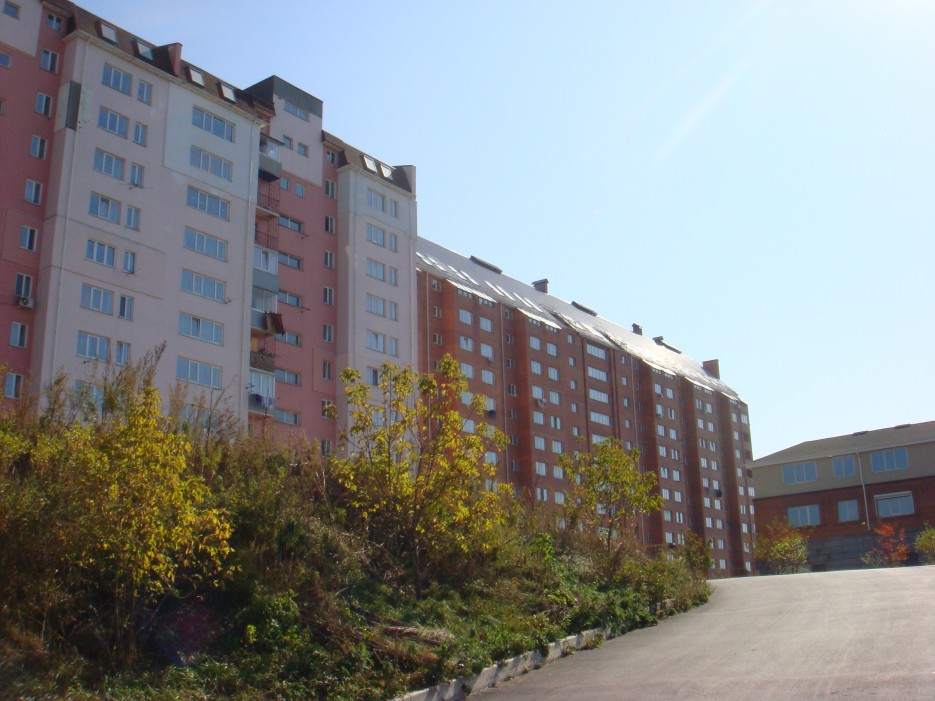Некоторые виды в городе   Владивосток (подборка)
