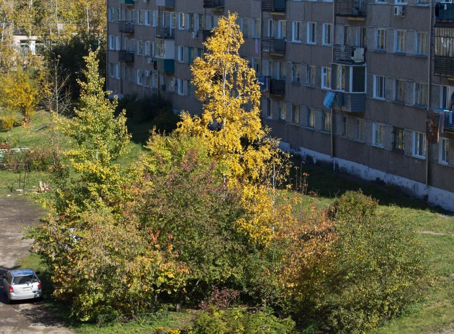 Фото 41336 | Осень