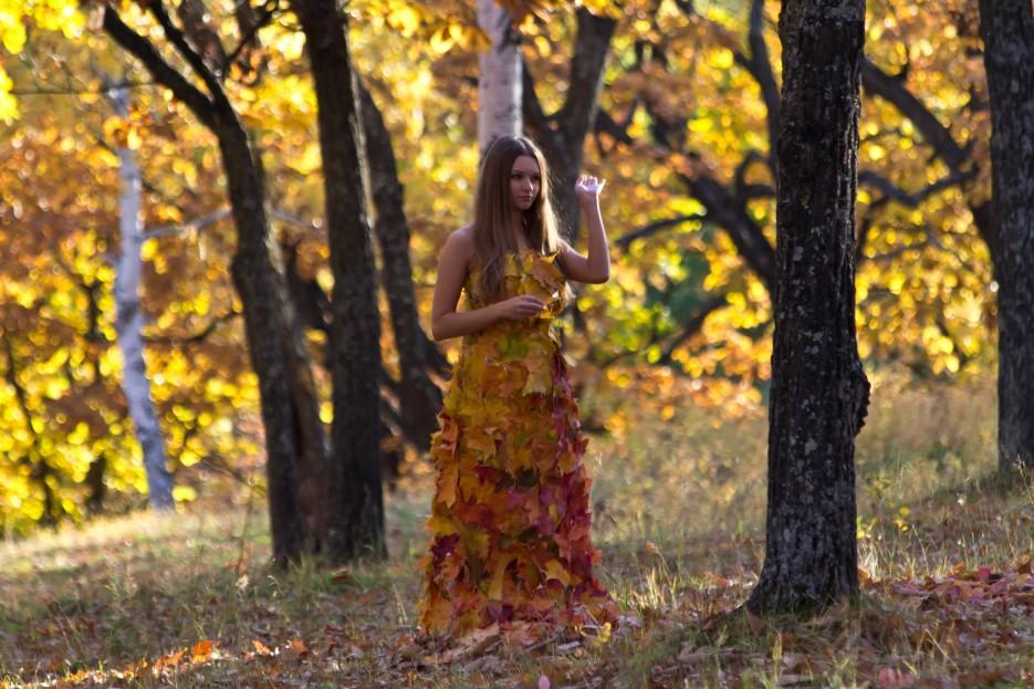 Фото 41342 | Осень