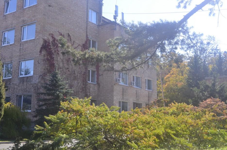 Ботанический институт, Окрестности парка | Ботанический сад, Владивосток