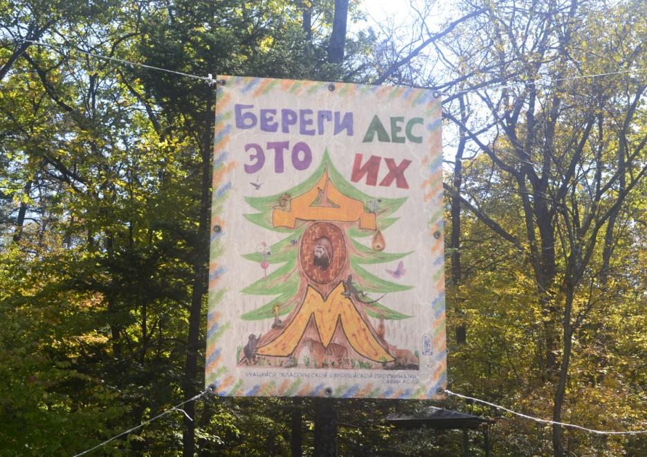 Ботанический сад, Окрестности парка (вход в лесополосу) | Ботанический сад, Владивосток