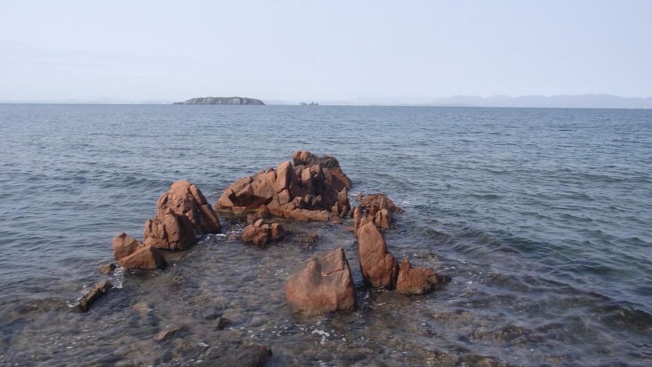 Фото 43243 | остров Попова