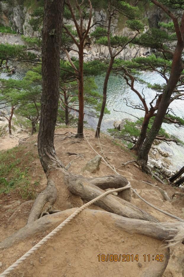 Фото 44514 | Пеший  5 дневный походик  по сопкам и бухтам п ва Гамова