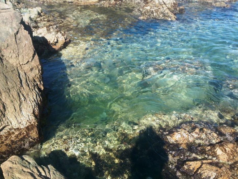 Фото 46806 | Остров Желтухина, 4-6 сентября 2015