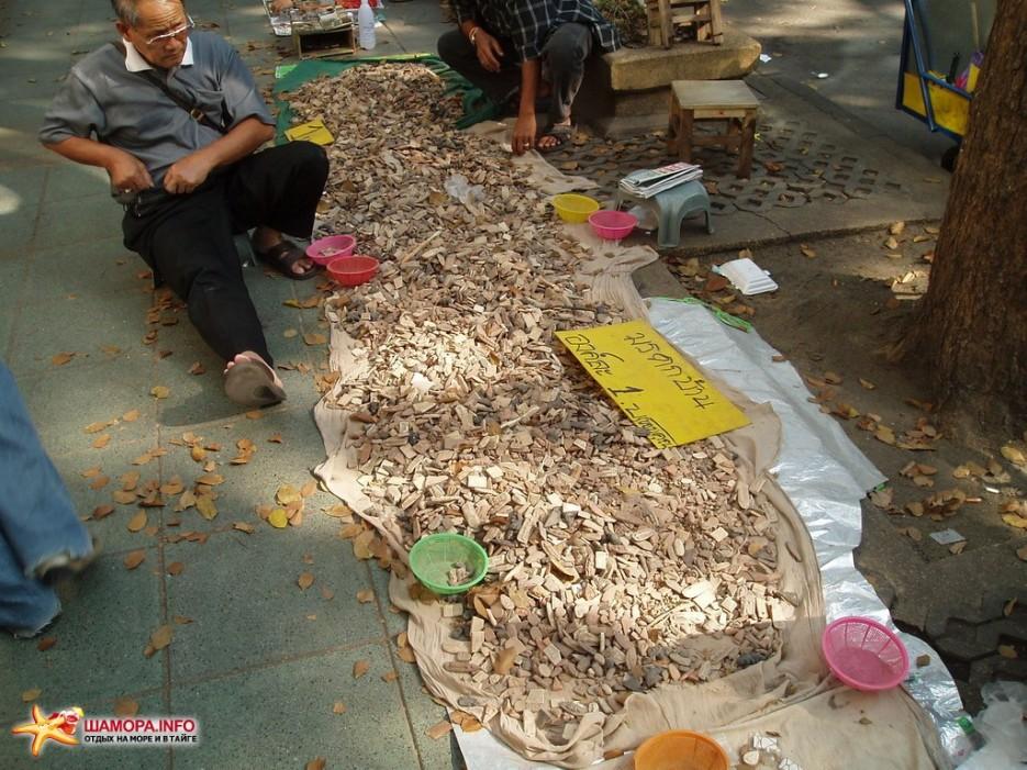распродажа древних черепушек   Тайланд. Бангкок.