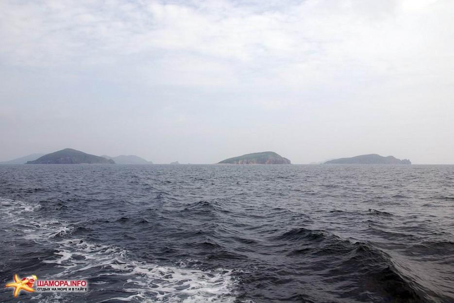 Фото 7455 | В море