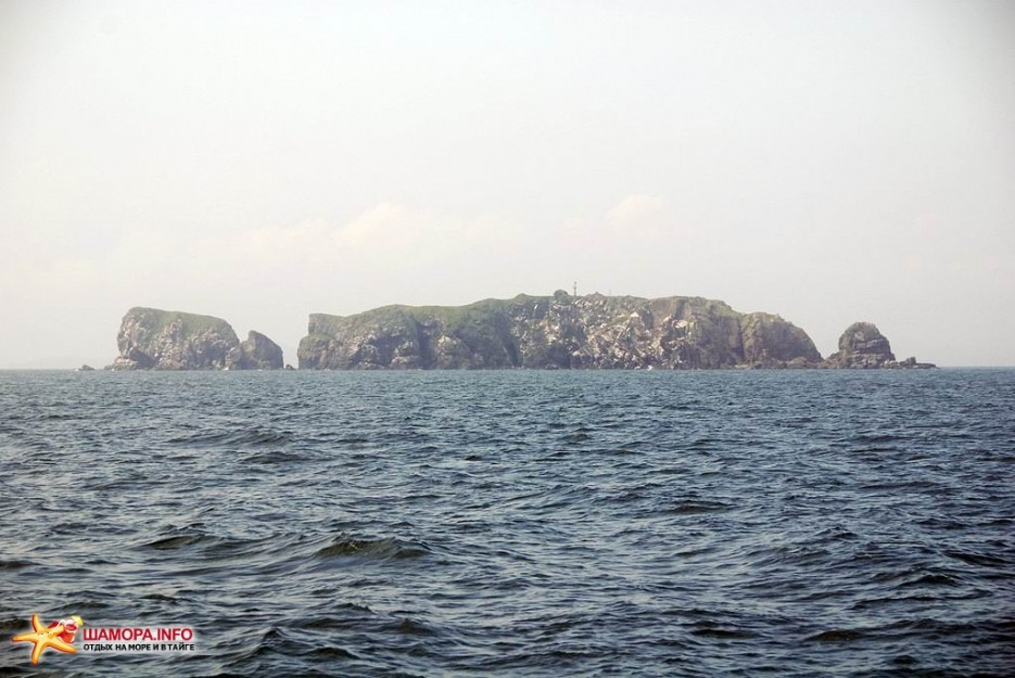 Фото 7458   В море