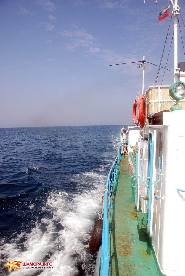 Фото 7463 | В море