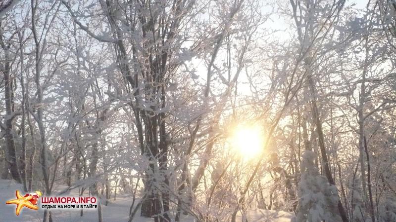 Фото 8208 | Январские каникулы на арсеньевском «Востоке»